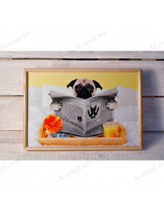 """Tray on a pillow laptop / breakfast """"Pug and the newspaper"""""""