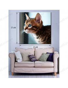 """Картина """"Любопытный котенок"""""""