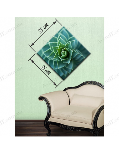 "Painting ""Succulents"""