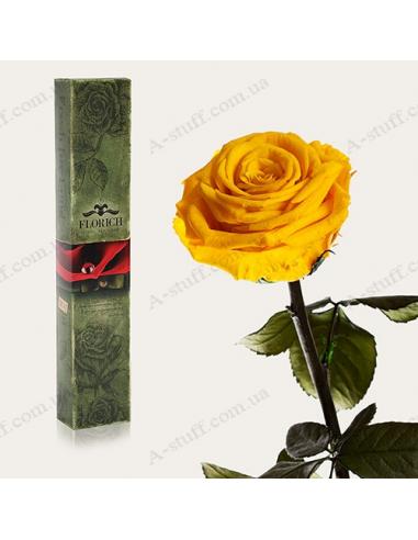 """Долгосвежая роза """"Солнечный цитрин"""""""