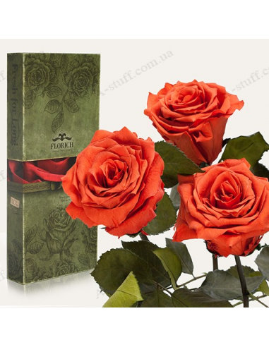 "Long-lasting rose ""Coffee Topaz"" (bouquet of 3 pcs.)"