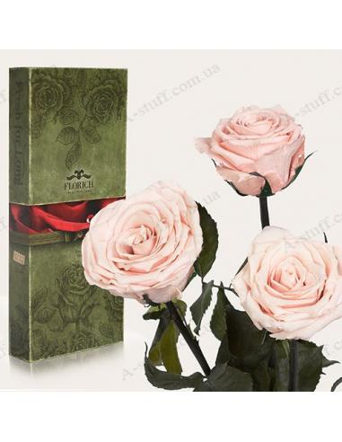 """Долгосвежая роза """"Розовый Жемчуг"""" (букет из 3 шт.)"""