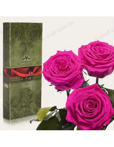 """Довгосвіжа троянда """"Малиновий Родоліт"""" (букет з 3 шт.)"""