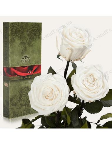"""Долгосвежая роза """"Белый Бриллиант"""" (букет из 3 шт.)"""