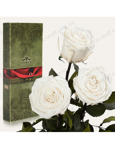 "Long-lasting rose ""White Diamond"" (bouquet of 3 pcs.)"
