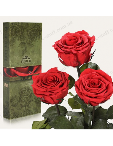 """Долгосвежая роза """"Алый Рубин"""" (букет из 3 шт.)"""