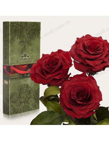 """Довгосвіжа троянда """"Багряний Гранат"""" (букет з 3 шт.)"""