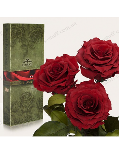 "Long-lasting rose ""Crimson Pomegranate"" (bouquet of 3 pcs.)"