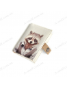 """Cover for the id passport """"Raccoon"""""""