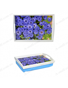 "Tray on a pillow with handles ""Forget-me-not"""