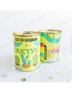 """Plant in a tin can """"Cactus"""""""