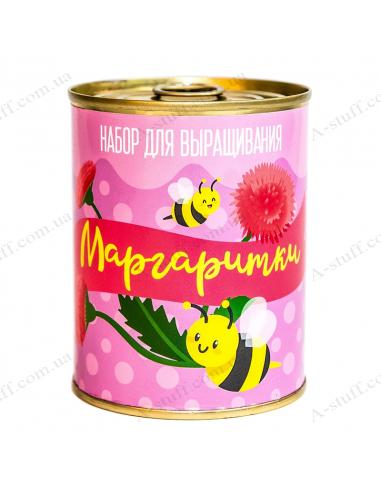 """Растение в консервной банке """"Маргаритки"""""""