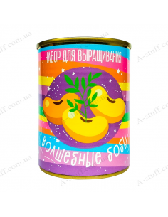 """Растение в консервной банке """"Волшебные бобы"""""""