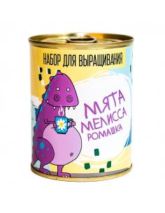 """Canned plant """"Mint, lemon..."""